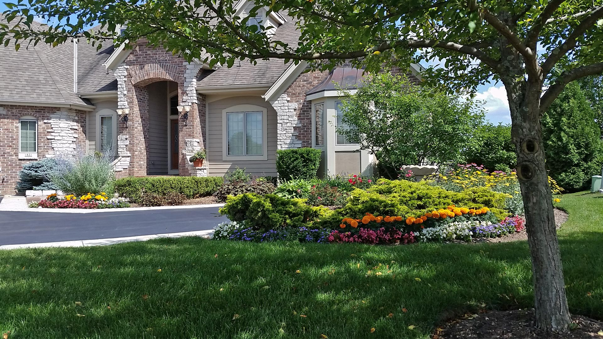 Front yard that is receiving lawn mowing, landscape trimming, and annual color services from Beautiful Blooms Landscape & Design, LLC.