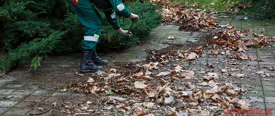 Removing yard debris decreases hazards and pests in Pewaukee.