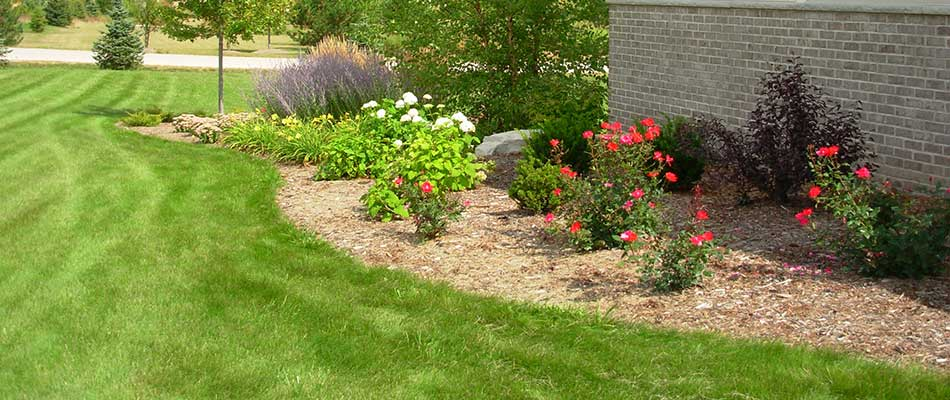 Healthy, green lawn with landscape bed and flowering plants in Delafield, WI.