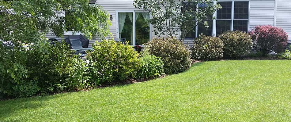 Delafield, WI home landscaping with shrubs, bushes, and plants.