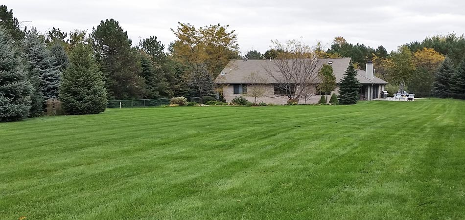 A Brookfield property after receiving scheduled lawn mowing services.