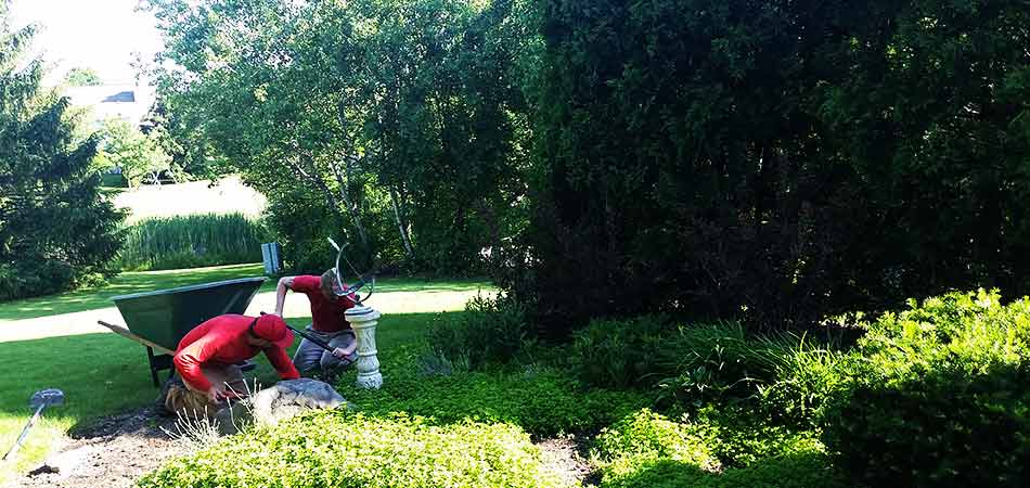 Two team members performing landscape bed maintenance during a yard cleanup service for a customer in Brookfield, WI.
