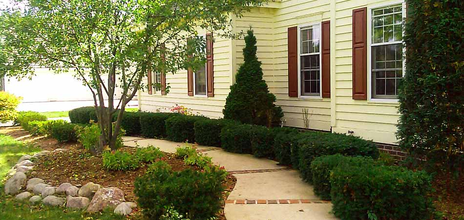 Our trimming and pruning services are available to residents in the Brookfield, WI area.