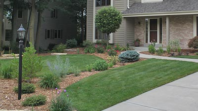 This sample of grass is indicating that this particular homeowner's lawn in Pewaukee, WI is in need of fertilization and weed control services.