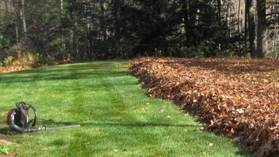 This homeowner in Brookfield, WI has a large backyard that was in desperate need of leaf removal services.